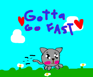 the fastest cat in the world!!!