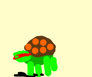 the turtle from tmnt