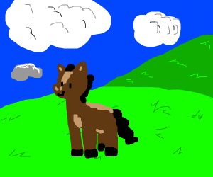 happy horse in a field