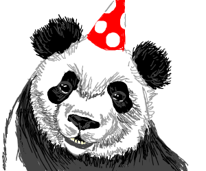 A panda's birthday