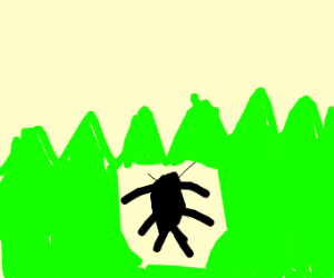 a bug in nature