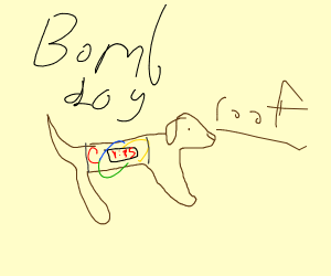 A dog that is actually a bomb