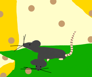 rat with two heads with an earthworm tail