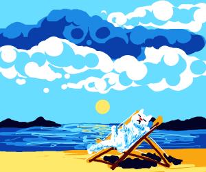 Kitty sunbathing on beach