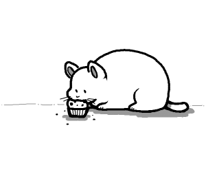 Fat cat eating a muffin