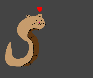 Snake Cat Loves You