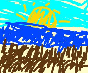 hairy beach