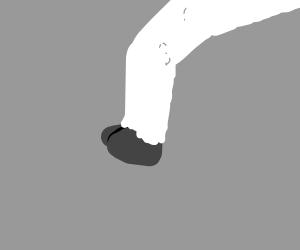 Sheep's leg