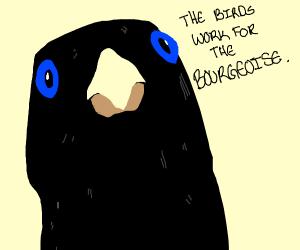 Birdception