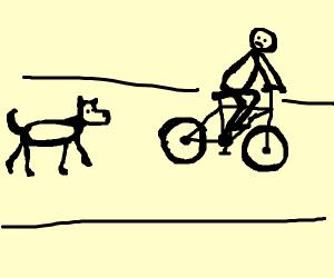 Doggo chasing a bike