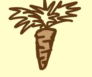 Brown vegetable