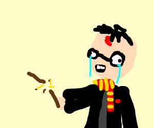 Harry Potter broke his wand