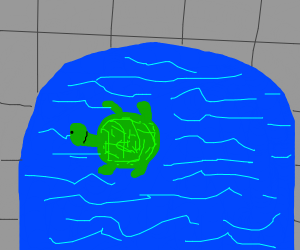 turtle in a swimming pool