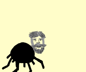 spider with a handsome mans head