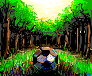 Wooden soccerball in forest
