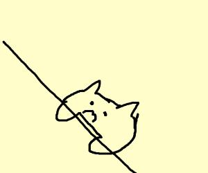 bongo cat is sad that he lost his bongos