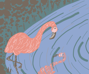 flamingo sees its own reflection