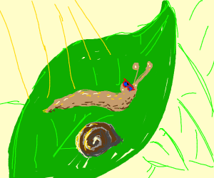 a snail out of its shell sun bathing on leaf