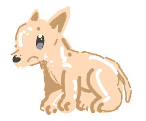 A hairless wolf