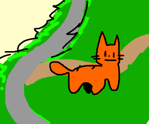 Orange cat going on a hike