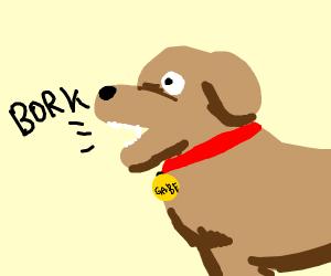 gabe the dog borks