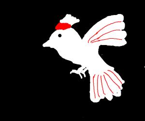 Victorian era bird