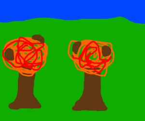 Spaghetti trees