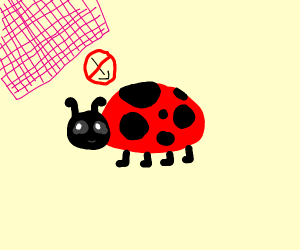 No! Please don't hurt this cute ladybug!