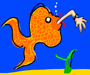 guy devoured by fish