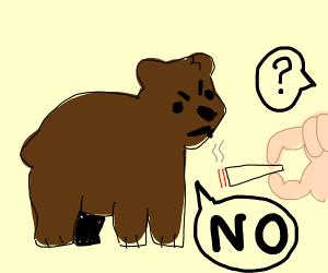 Bear says no