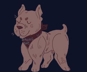 cute muscular doggo uwu