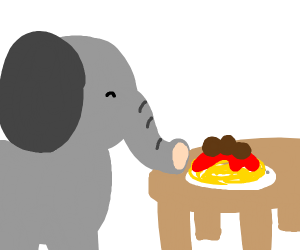 Elephant eating spaghetti with meatballs