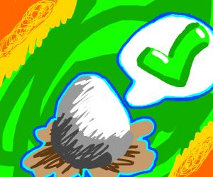 Egg is correct