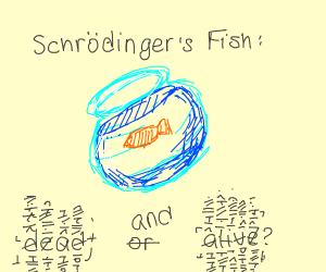 fish of schorindger
