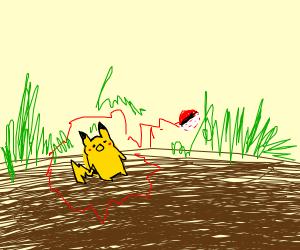 catching a pikachu!