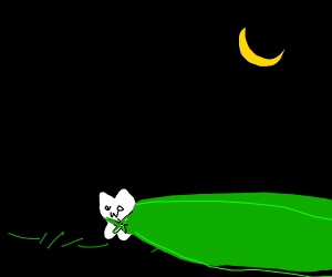 Little kitty hides behind green cape (night)