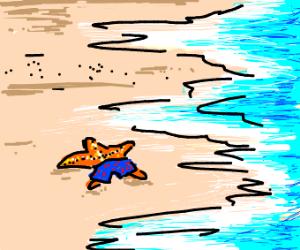 Starfish wearing swim pants