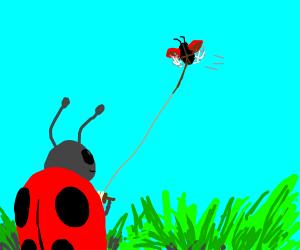 Ladybug flying a kite