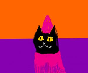 A cat is a princess