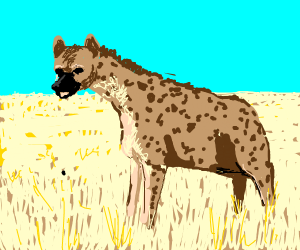 Hyena in the savanna