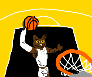 best basketball player on the team is a cat