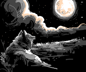 Wolf looking at the moon