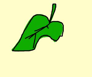Animal Crossing Leaf