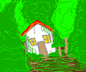 house in overgrown forest