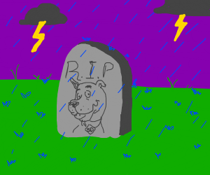 """Rip scooby"" grave in the storm"