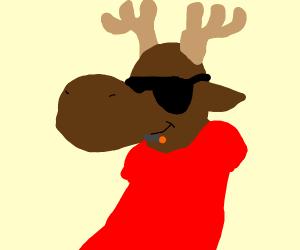 Moose chill af