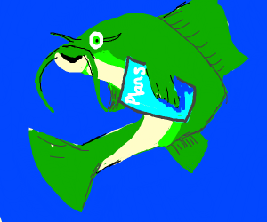 Catfish Planning