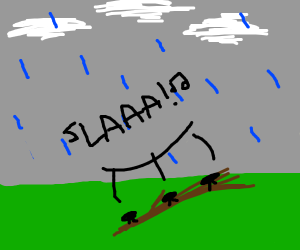 Ants singing on a twig during a rainstorm
