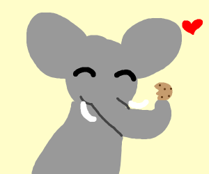 Elephant eating a cookie