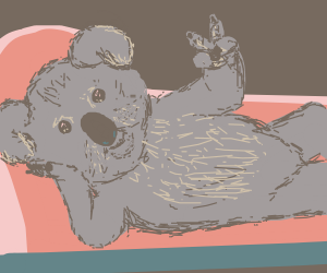 Koala lounges giving the Peace sign